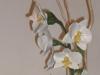 orchidea primordiale